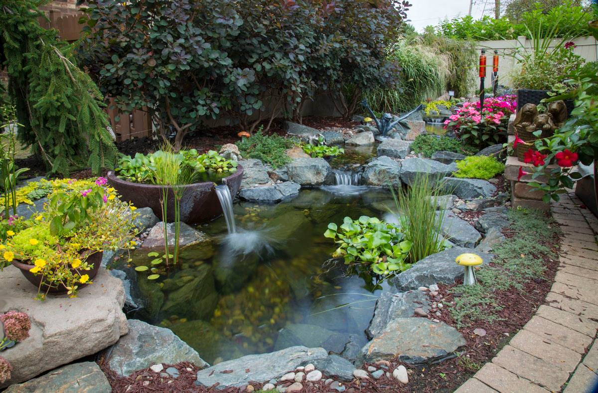 Fish & Koi Pond Project Photos & Ideas-NH-Chester